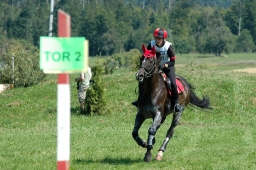 altensteig-2012_cic1-104-jpg