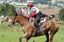 altensteig-2012_cic1-154-jpg