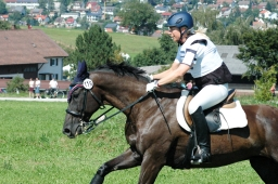 altensteig-2012_cic1-175-jpg