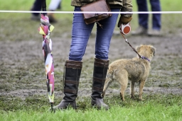 boekelo-2017-cross-country-032-jpg